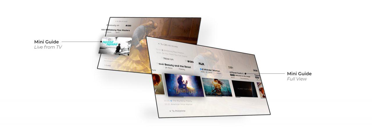 EPG: Maximize Revenue with Custom UX - Banner